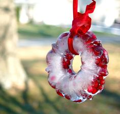 Pretty ice wreath... Though it's not consistently cold enough in Texas for this ;)