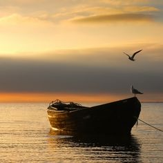 o barco do Pi Beautiful World, Beautiful Places, Beautiful Pictures, Belle Photo, Wonders Of The World, Cool Photos, Sailing, Sunrise, Scenery
