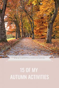 Autumn Activities, Silver Lining, Dutch, Country Roads, Sweet, Blog, Candy, Dutch Language, Blogging