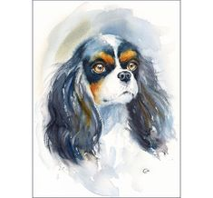Watercolor Cavalier King Charles Spaniel  by CMwatercolors on Etsy