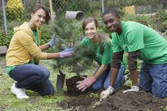 Join a Community Service Project Near You!