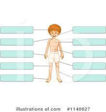 Resultado de imagen de BODY CLIPART