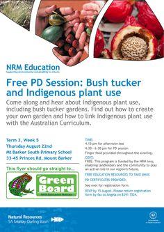 Bush Tucker and Indigenous Plant use