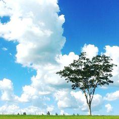 Além do horizonte deve ter algum lugar bonito pra viver em paz .. 🎶🍃🌾🌴👌 #férias #tudolindo