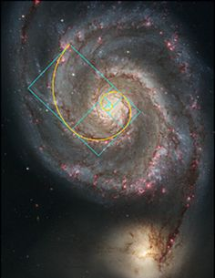 Fibonacci pattern in nature:  The Milky Way has several spiral arms, each a logarithmic spiral of 12 degrees.  Contrary to Newtonian physics, the stars on the outside move at a higher velocity than expected, a unique trait of the cosmos that helps the cosmos preserve its shape.