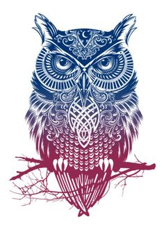 high on fire owl shirt - Google Search