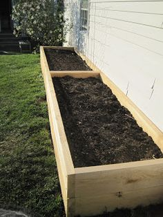 Local Color: Tall Raised Garden Beds for the Yard with Dogs!
