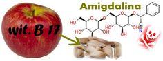 Badania dowodzą, że pestki jabłek zawierają kwas pruski i może być trujący.