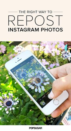 Here's the Right Way to Repost #Instagram Photos. #techtips