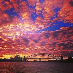 Sunset  #Sydney  #Australia   by leo_stone (instagram)