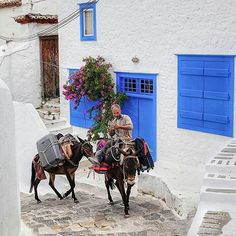 Hydra island, Greece...  Amazing shot of the picturesque #hydra island!   By @george_kormpos.