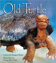 Old Turtle  by Douglas Wood, Illustrated by Cheng-Khee Chee