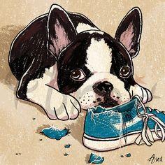 Boston Terrier puppy by SiberianArt on Etsy, $30.00