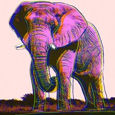 Andy Warhol - Elephant, 1983 - endangered species series.