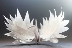 #HTE Origami Enthusiast Designs a New Paper Crane Daily for 365 Days At the beginning of 2015 origami enthusias