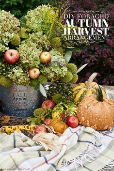 Apple Harvest, Fall Harvest, Autumn Blaze Maple, Low Maintenance Shrubs, Fall Floral Arrangements, Autumn Scenery, Welcome Fall, Tiny Flowers, Flower Centerpieces