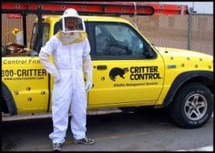 Critter Control and bee removal