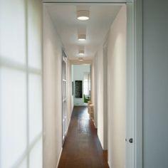 Domo Symmetric Ceiling Light