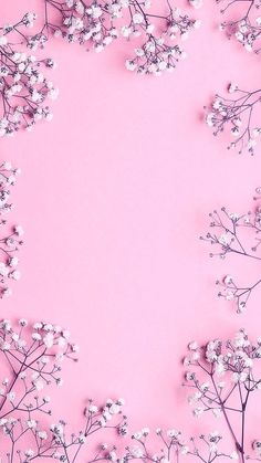 Pink flower wallpaper Pink flower wallpaper The post Pink flower wallpaper appeared first on Ideas Flowers. Tumblr Wallpaper, Pink Wallpaper Backgrounds, Flower Background Wallpaper, Flower Phone Wallpaper, Pink Wallpaper Iphone, Trendy Wallpaper, Pretty Wallpapers, Flower Backgrounds, Cellphone Wallpaper