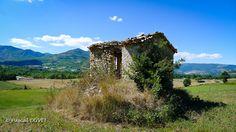 AHPD08 - La petite maison dans la prairie - Alpes de Haute Provence 04