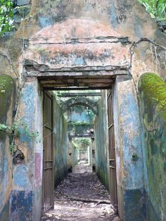 Devils Island in French Guiana. Such a crazy history. Used to be home to 80,000 hardened criminals, thieves and murderers who opposed Napoleon III.