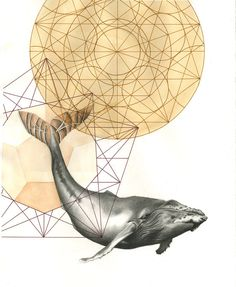 Sacred Geometry Whale  11in x 14in Print by KAITtheDRAWING on Etsy / Sacred Geometry <3