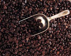 6 Lbs Bali Blue Moon Organic Rfa, Fresh Gourmet Medium/Dark Roast Coffee Beans