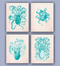 Octopus Collection Prints, Set of 4, 11x14,  Vintage illustrations in green turquoise, Nautical Art, beach cottage, Coastal living decor.