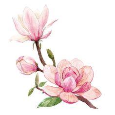 Watercolor Landscape Paintings, Watercolor Flowers, Watercolor Paintings, Tattoos For Women Flowers, Sculpture Painting, Painting Patterns, Illustrations, Botanical Prints, Magnolia Flower