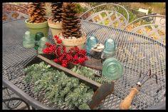 Succulent tool caddy