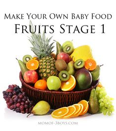 Make your own baby food Fruits Stage 1