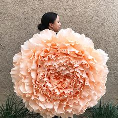 "40"" crepe paper peony Available in your choice of colors This giant beauty is made with 180 gram crepe paper and comes with wire hook for hanging on backdrops or walls Available for local delivery and pick up in Orange County CA surrounding areas $300"
