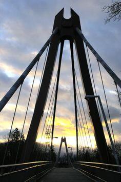 Defazio bridge - Eugene