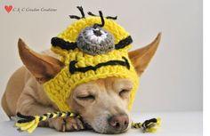 Despicable Me Minion Dog Hat par CCCreativeCreations sur Etsy, $14.00