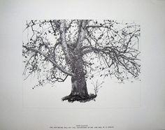 Google Image Result for http://www.artbrokerage.com/artthumb/wyethandrew_26886_2/850x600/Andrew_Wyeth_Four_Seasons_Portfolio_of_12_Prints.jpg