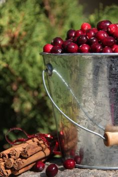 I'd like to do this.  The cranberries look so festive in the galvanized bucket with the cinnamon sticks tied offside.  -- Eve.