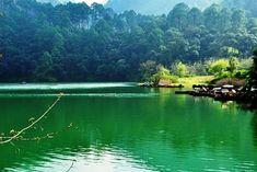 Soaking In The Greens Of Sattal-The Seven Lakes Of Uttarakhand including Sattal, Uttarakhand, India,