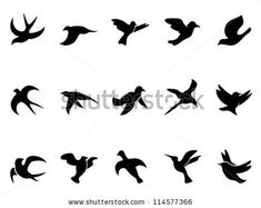 simple bird's flying Silhouettes by HuHu, via ShutterStock