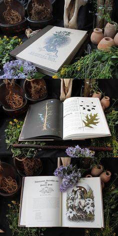 Ervas para serem usadas na cozinha mágica. Herbologia.