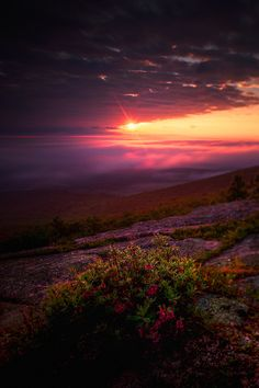 Acadia National Park, Maine by Nate Parker Photography