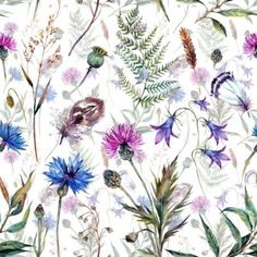 Wildflowers removable wallpaper colorful green and purple wall mural photo - New Ideas Willow Branches, Purple Walls, Removable Wall Stickers, Illustration, Print Wallpaper, Peel And Stick Wallpaper, Free Vector Art, Green And Purple, Wild Flowers