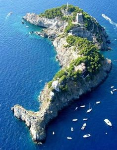 Dolphin Island is part of The Sirenusas (Italian: Le Sirenuse) - also known as the Gallos (Li Galli) or The Roosters - an archipelago of little islands off the Amalfi Coast of Italy between Isle of Capri and 6km southwest of Positano. The name, Sirenuse, is a reference to the mythological sirens said to have lived there.