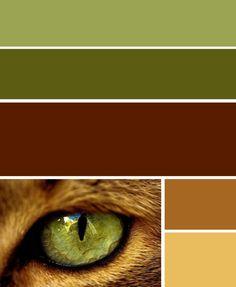 couleurs pour mon salon ou mon sous-sol