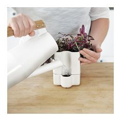 SÖTCITRON Self-watering plant pot, white indoor/outdoor, white