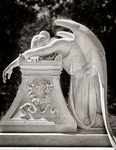 """""""Sanford Angel"""" – Angel at Grave Site for Leland Stanford Jr. on Stanford University campus."""