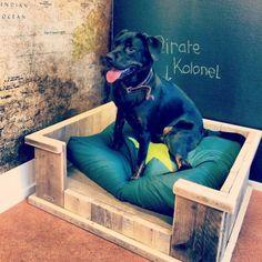 Hondenmand van steigerhout klein/middel/groot | Hondenmanden | JORG`S Houten Meubelen