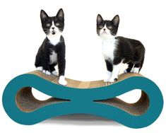 Figure 8 Cat Scratcher Turquoise -- More info could be found at the image url.Note:It is affiliate link to Amazon.