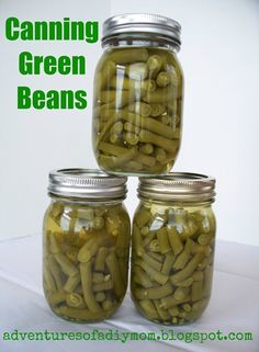 Canning green beans is easy! Step-by-step instructions for canning beans. Involve your kids! They can be a great help preparing the beans. Home Canning Recipes, Canning Tips, Jar Recipes, Canning Beans, Can Green Beans, Cooking Pork Chops, Runner Beans, Recipe Cover, Cooking White Rice