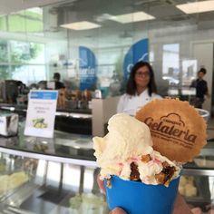 BOL: em busca do melhor sorvete italiano em Bolonha Gelato, Ice Cream, Desserts, University, Food, Italian Ice Cream, Best Ice Cream, Bologna, No Churn Ice Cream