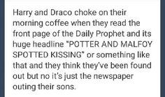 I have a problem.. I ship drarry But also scorbus And thats weird because scorbus are the children or drarry I font think i can ship two fathers together and their sons together